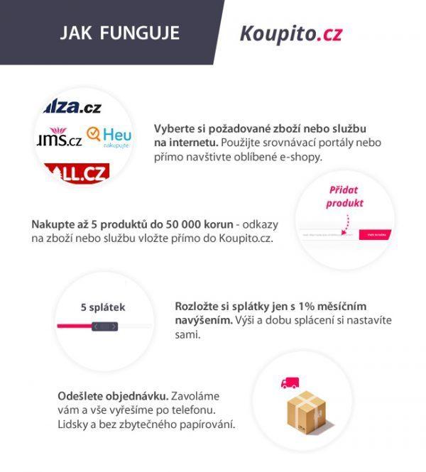 infografika-koupito